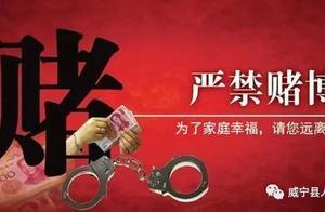 涉嫌赌博!毕节3人被判刑,30人被行政处罚!