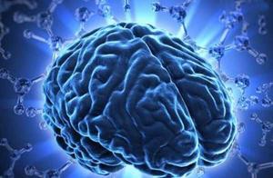 大脑极限的恐怖,能不能被开发到100%
