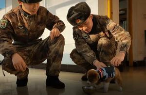 """边防战士救了只小狗,还让它加入""""队伍"""",狗:有铁饭碗了"""