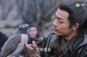 《狼殿下》肖战惹争议,疑用国家保护动物,却谎称是CG制作