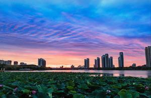 """黑龙江最新消息!这些收费站易拥堵,返乡人员需满足""""这些条件"""""""