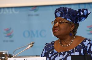 """尼日利亚各界称世贸组织新任总干事为""""非洲骄傲"""""""