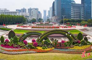乘风破浪,又见彩虹,武汉街头20组立体花坛致敬英雄