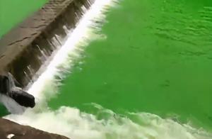 一河水变绿,官方回应了