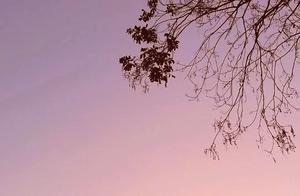 看落日余晖,等烟花升起