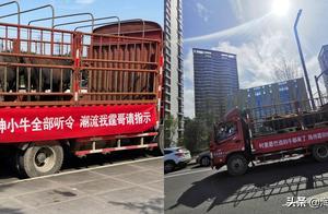 陈伟霆粉丝出动牛车拉横幅应援,网友大笑:创意无限