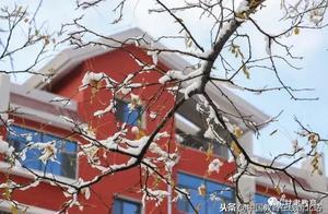 甘肃初雪|甘肃18所高校初学雪景大PK,快来看看有你的母校没?