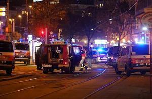 维也纳6处地点发生恐怖袭击 造成多人伤亡