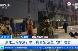 火候拿捏得死死的!零下30℃的哈尔滨有多冷?活鱼都得煮着卖