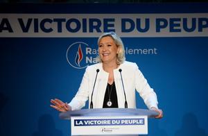 """欧盟选举结果显示,民众""""受够了假民主"""""""