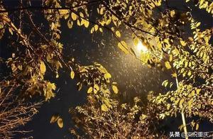 """盼星星盼月亮,中心城区喜迎降雪,周末一起去山上""""蹲""""雪"""