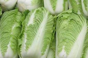 东北酸菜正宗的基本腌制方法、简单易学、美味可口