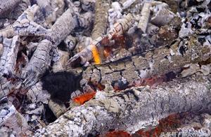 原始人野外保存保留火种的技巧