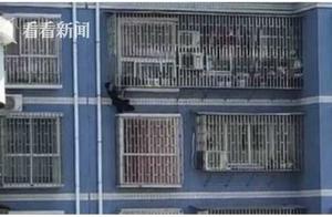 湖南两岁幼童头部被卡 退伍军人徒手爬到5楼救人