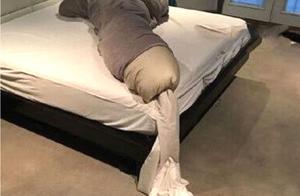 酒店的被子都被玩成这样!