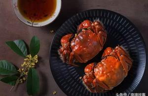 """食在金秋,""""蟹逅""""潮汕"""