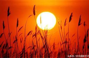摄影丨最美的日出,你看过几个?