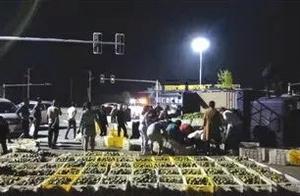 「文明乡风千村行」石门一运橘车侧翻,20多位好心人自发帮助捡橘子