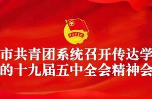 全市共青团系统召开传达学习党的十九届五中全会精神会议