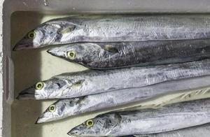 途经陕西榆林进口带鱼外包装检出新冠病毒 相关人员货物已被管控