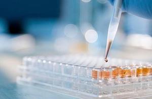 呼和浩特市一家4S店5份货物外包装标本核酸检测呈阳性