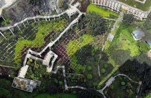 """重庆再现""""魔幻""""建筑,整体高度落差70米,居民戏称""""地狱小区"""""""