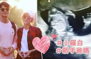 """41岁杨怡宣布怀孕,孩子取名""""小罗白"""",网友:恭喜金铃梦熊有兆"""