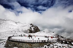 又下雪啦!达古冰川山顶上已经成为雪的天下
