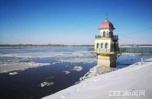 大江缀白荷,一雪送冬来丨一年就能看两回,松花江哈尔滨段江面开始跑冰排了