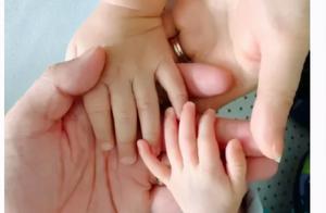 """胡杏儿幸福宣布怀三胎:""""我愿望成真了!"""""""