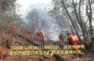 364名森林消防指战员投入迪庆香格里拉森林火灾扑救