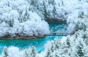 """青城、西岭等8个景区下雪了!成都出发最快1h打卡""""南国雪乡"""""""