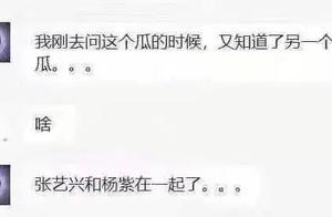 杨紫和张艺兴恋爱?杨幂和魏大勋结婚?工作室都发声明回应了