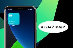 稳定提升!iOS 14.2 Beta 2体验:修复4个bug