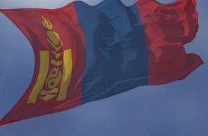 价值3000万!蒙古国捐赠的3万只羊来了:首批4000只今日抵华