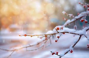 寒潮蓝色预警发布!上海要下雪了,或持续1~2小时