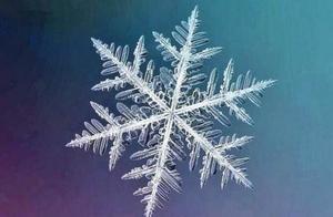 """八句大雪诗词:这2句没有一个雪字,却能感受到""""雪之狂舞"""""""