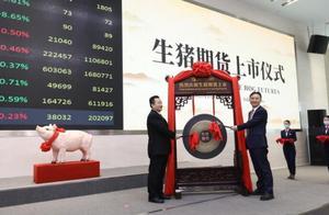 1月8日生猪期货在大商所挂牌上市