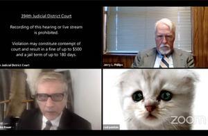美国律师线上开庭不小心打开猫滤镜:尴尬还不会关