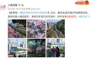 """网红""""开往春天的列车""""遭无人机撞击逼停,官方回应"""