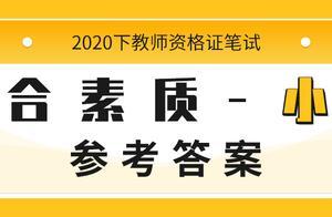 2020下半年教师资格证笔试小学《综合素质》真题解析