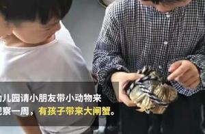 """幼儿园要求带小动物,家长给带大闸蟹,网友""""都是动物,没带错"""""""