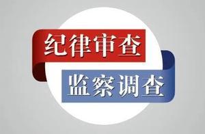 海南省委常委、三亚市委书记童道驰接受纪律审查和监察调查
