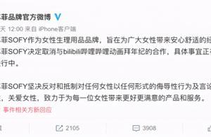 """B站被多家品牌拉入""""黑名单""""回应称将开展春节网络环境专项整治行动"""