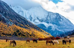 比新疆景美人少还便宜,秋天的稻城亚丁你不能错过