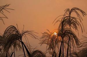 苏州西山农家乐带您看太湖西山岛秋季的颜色,惊艳到你了吗?