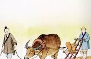 牛文化:中国古代的牛不仅代表着农耕文明,在祀戎中也是关键地位
