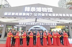 中国首个辣条博物馆在长沙黄兴步行街开馆