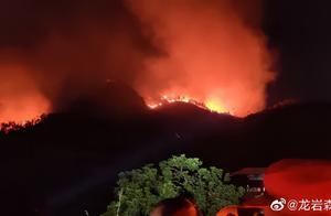 漳州漳浦突发山火!森林消防连夜扑救,现已全线扑灭!天干物燥这些事要注意