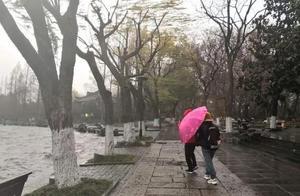 霸王级寒潮杀到!杭州这里飘雪花了,西湖边已是这幅模样!主城预计晚上8点下雪